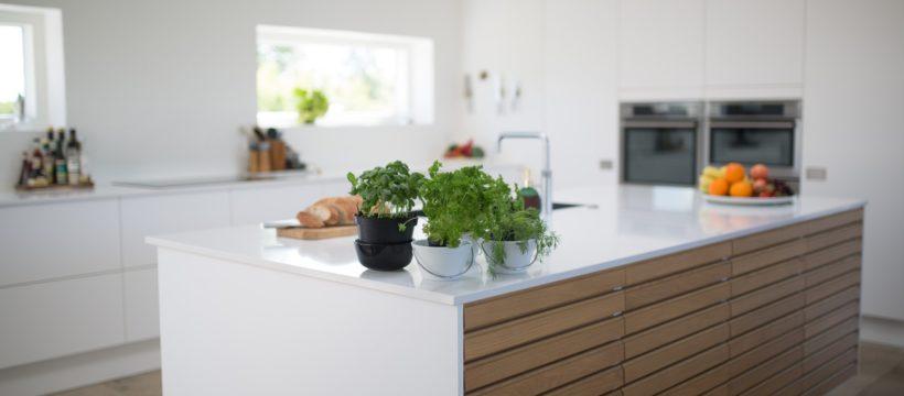 Moderne køkken med planter